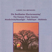Ludwig van Beethoven - The Famous Piano Sonatas by Dubravka Tomsic