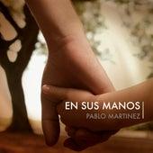 En Sus Manos de Pablo Martinez