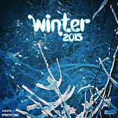 Winter 2015 by Various Artists
