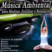 Música Ambiental para Meditar, Estudiar y Relajación de Various Artists