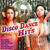 Disco Dance Hits by Various Artists