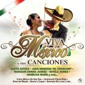 Viva Mexico y Su Mariachi by Various Artists