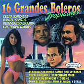 16 Grandes Boleros Tropicales by Various Artists