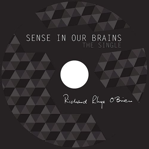 Sense in Our Brains by Richard Rhys O'Brien
