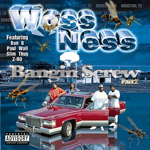 Bangin' Screw Pt. 2 by Various Artists