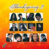 Thanksgiving, Vol. 2 von Various Artists