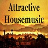 Attractive Housemusic (Organic Deephouse Meets Inspiring Proghouse Balearic Ibiza to Hot Miami Beach Tunes Compilation in Key-A Plus the Paduraru Megamix) de Various Artists