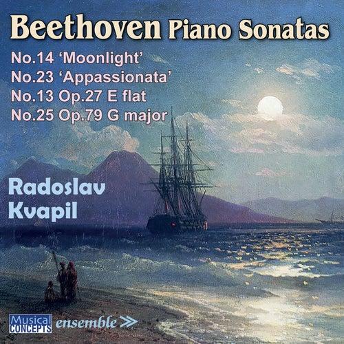 Beethoven Piano Sonatas: No. 13, No. 14 (