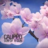 Son of a Gun von Calippo