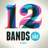 12 Bands of Gru, Vol. 2 by Various Artists