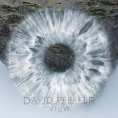 View by David Pfeffer
