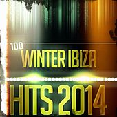 100 Winter Ibiza Hits 2014 (Top Essential EDM Electro Latin House Hits) by Various Artists
