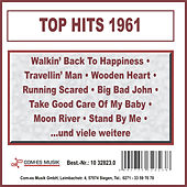 Top Hits 1961 by Various Artists