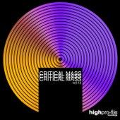 Critical Mass, Vol. 12 by Various Artists