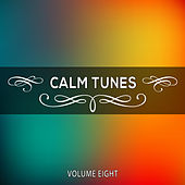 Calm Tunes, Vol. 08 by Various Artists
