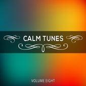 Calm Tunes, Vol. 08 von Various Artists