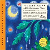 Sleepy Rain by Dr. Jeffrey Thompson