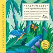 Rain Forest by Dr. Jeffrey Thompson