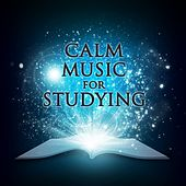Calm Studying Music 2015 by Calm Music for Studying