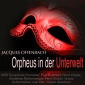 Offenbach: Orpheus in der Unterwelt von Various Artists