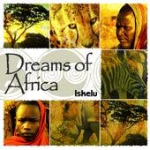 Dreams Of Africa by Iskelu