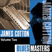 Blues Masters Vol. 2 by James Cotton