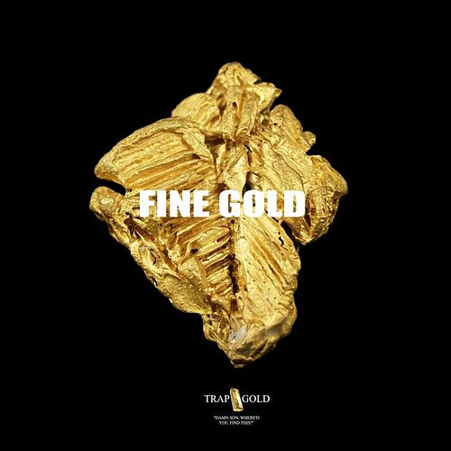 Fine Gold by Various Artists
