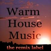 Warm Housemusic (Organic Deephouse Meets Inspiring Proghouse Best Ibiza to Miami Beach Tunes Compilation in Key-G P Plus the Paduraru Megamix) de Various Artists