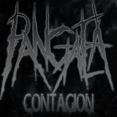 Contagion by Pangaea