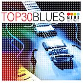 Top 30 - Blues de Various Artists