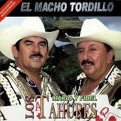 El Macho Tordillo von Los Tahures