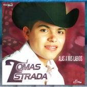 Alas A Mis Besos by Tomas Estrada