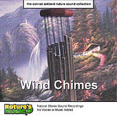 Wind Chimes by Nature's Music