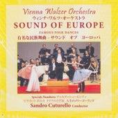 Sound of Europe - Famous Folk Dances by Ilija Marinkovic