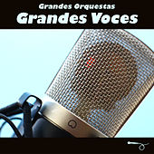 Grandes Orquestas, Grandes Voces de Various Artists
