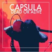 Dead or Alive de Capsula
