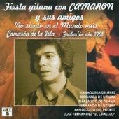 Fiesta Gitana Con Camarón y Sus Amigos. No Siento en el Mundo Más von Various Artists