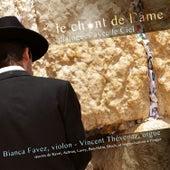 Le chant de l'âme by Vincent Thévenaz
