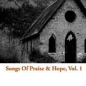 Songs Of Praise & Hope, Vol. 1 de Various Artists