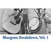 Bluegrass Breakdown, Vol. 1 von Various Artists