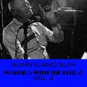 Walking With The Blues, Vol. 3 de Sunnyland Slim