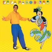 Hoje É Dia De Festa by Zeca Pagodinho
