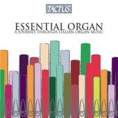 Essential Organ: A Journey Through Italian Organ Music by Various Artists