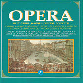 Opera - Vol. 8 von Various Artists