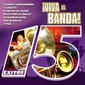 ¡viva la Banda! by Various Artists