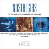 Nostalgias, Vol. 12 - 20 Éxitos Inolvidables de Siempre de Various Artists