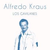 Los Gavilanes de Alfredo Kraus