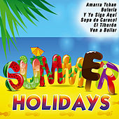 Summer Holidays by Various Artists