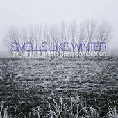 Smells Like Winter by Various Artists