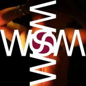 Wsm Lc 80 by Waffensupermarkt